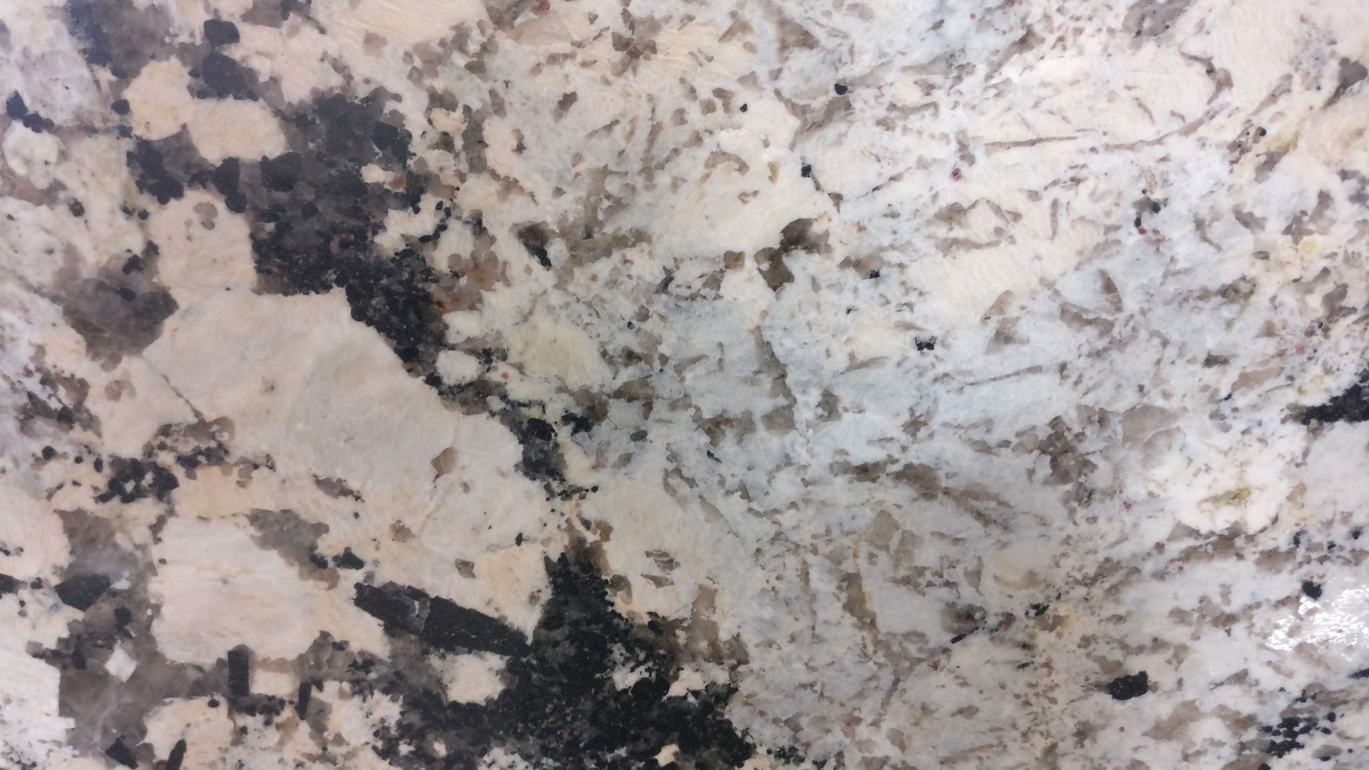Can You Bleach Granite Countertops 5 Most Popular White Granite Colors Of 2018 Stoneland
