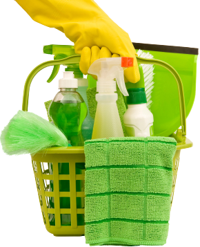 green-cleaning-flip