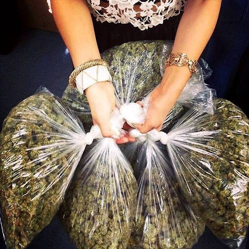 Girl Holding Money Wallpaper Top 5 Excuses For Smoking Weed Stoner Things