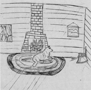 Lone Wolf wolf near the fireplace