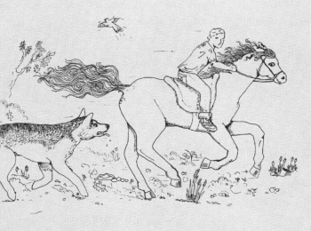 A Ride with Fate Chased by a dog