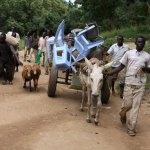 Sudan vows to continue military campaign in Blue Nile