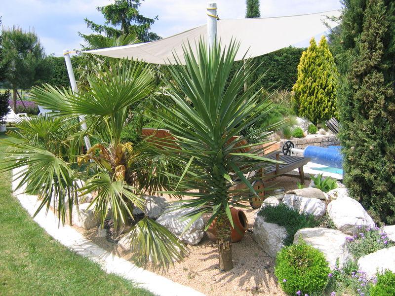 56381466jpg (800×600) piscine Pinterest - photo d amenagement piscine