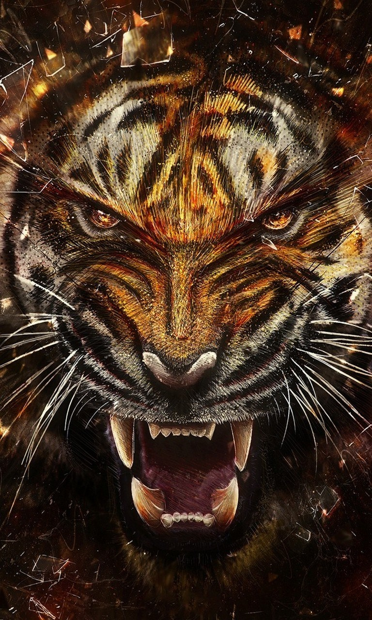Angry Lion Wallpaper Hd 1080p Tiger Hd Wallpaper Background For Windows 10 Mobile