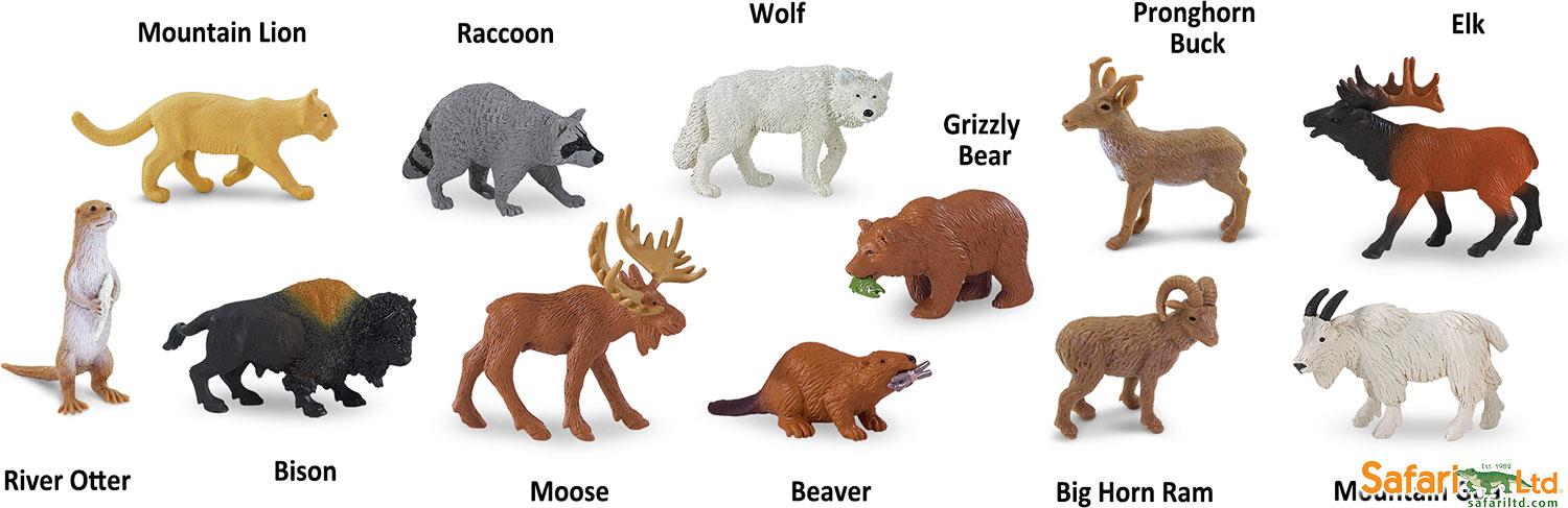 Forest Animal Wallpaper Forest Animals Toob Grand Rabbits Toys In Boulder Colorado