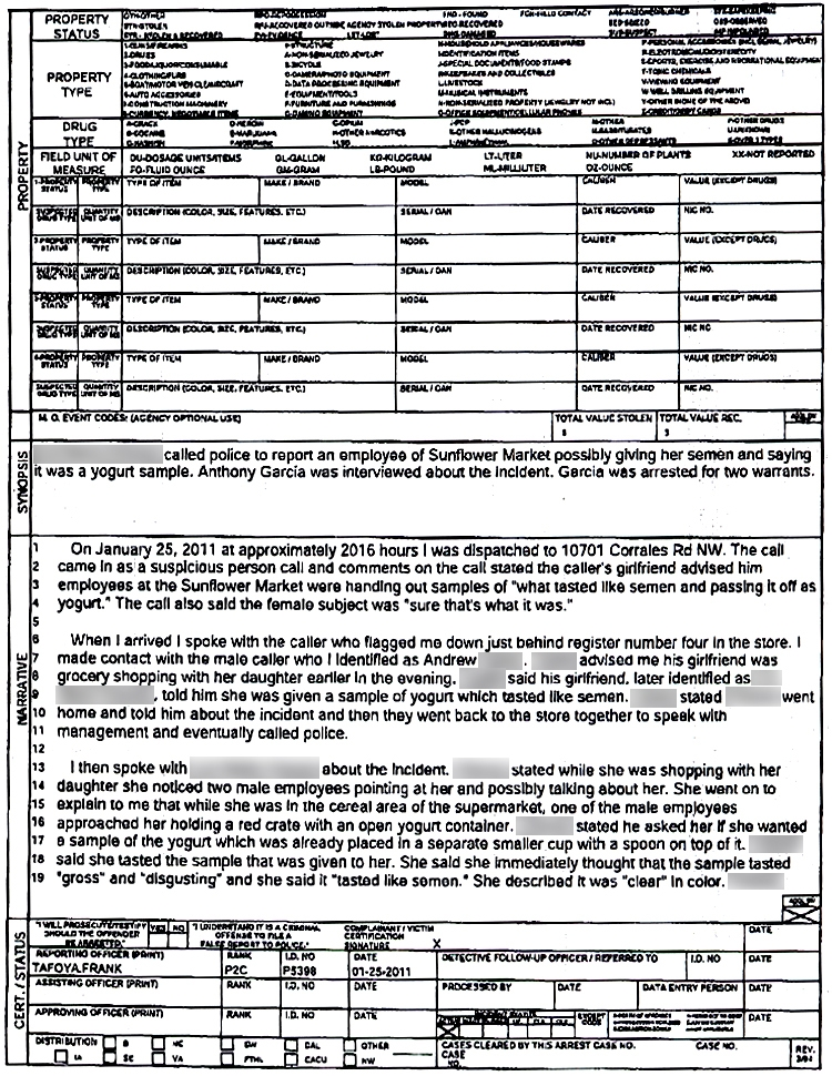 Fine Police File Template Frieze - Example Resume and Template Ideas - police incident report template word