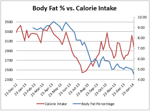 The Calorie Project - Update 3 How Calorie Intake  Energy