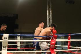 Gala Hurricane Fight 2 STB