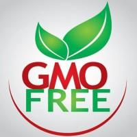 GMO Free (Non GMO)