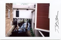 Instant Photographs Ct. Series