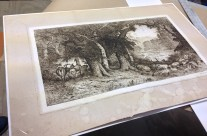 What a little matting can do …