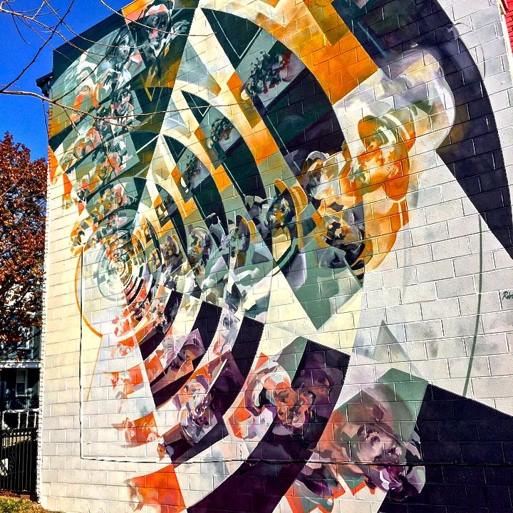 DISTRICT WALLS Abstract Street Art in DC with Robert Proch  more - proch