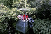 Canopy Access Cranes | Smithsonian Tropical Research Institute