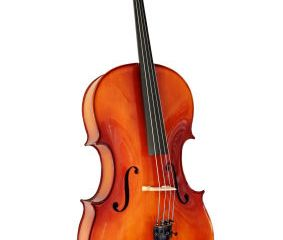 Cello, isolated on white with clipping path.