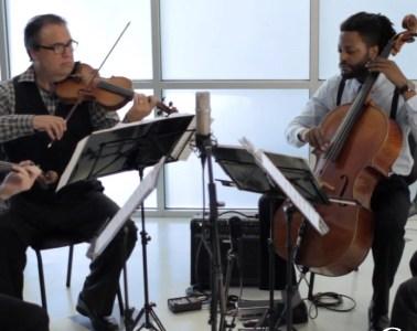 Turtle Island String Quartet