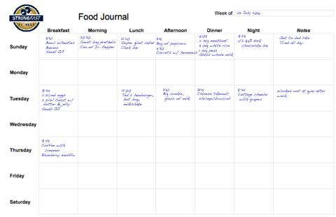 Food Journal Sample Samplescsatco