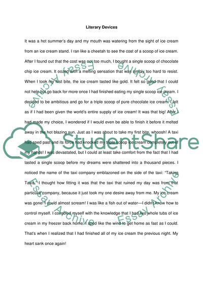 literary devices essay