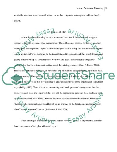 Human Resource Planning Essay Example Topics and Well Written