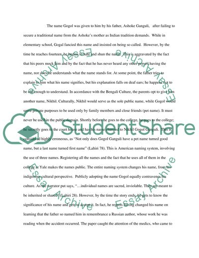 The Namesake Character Analysis Paper Essay Example Topics and