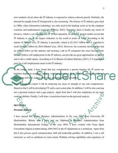 Career Action Plan and Self Reflection Essay Example Topics and