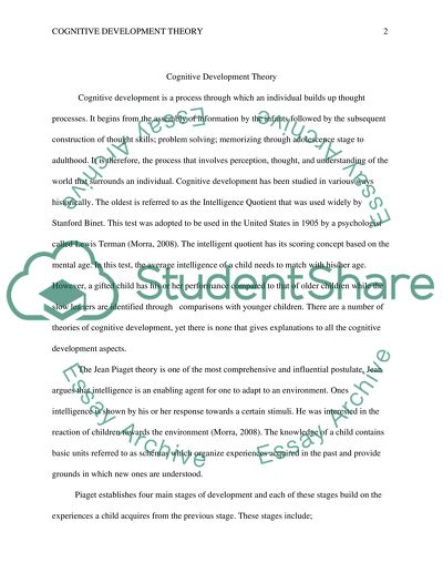Cognitive Development Theory Essay Example Topics and Well Written