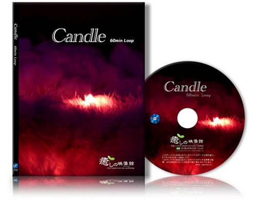 candole_bd