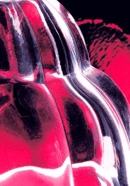 ©Studio Pixels & Papillon