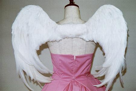 wing023-b