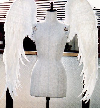 wing030-f