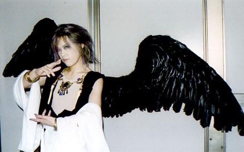 wing034-tika2