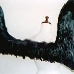 wing035-b