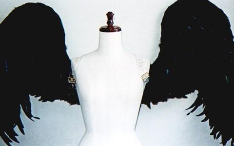 wing035-f
