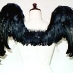 wing037-b