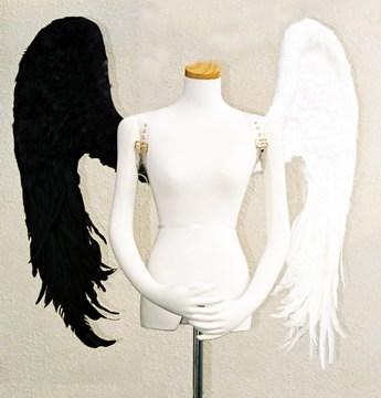 wing045-f