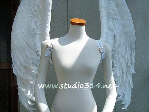 wing059