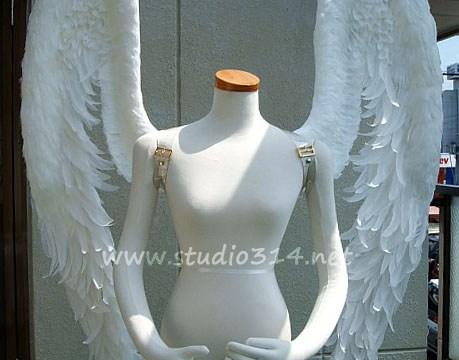 wing060
