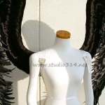 wing064-s3