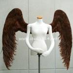 wing067