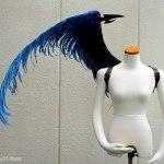 wing071-f