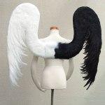 wing076-b