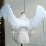 wing080-b