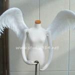 wing080