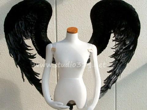 wing081