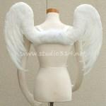 wing082-b