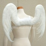 wing082-s2