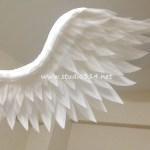 wing085-4