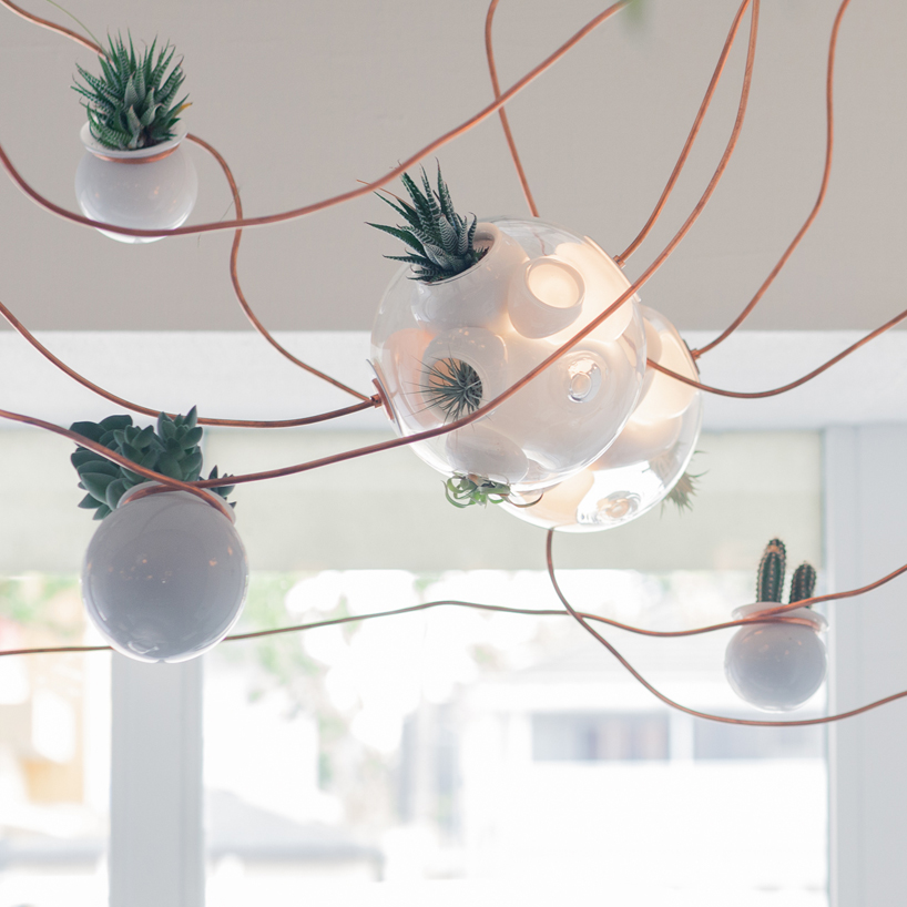 top omer arbel. top omer arbel tochinawestcom
