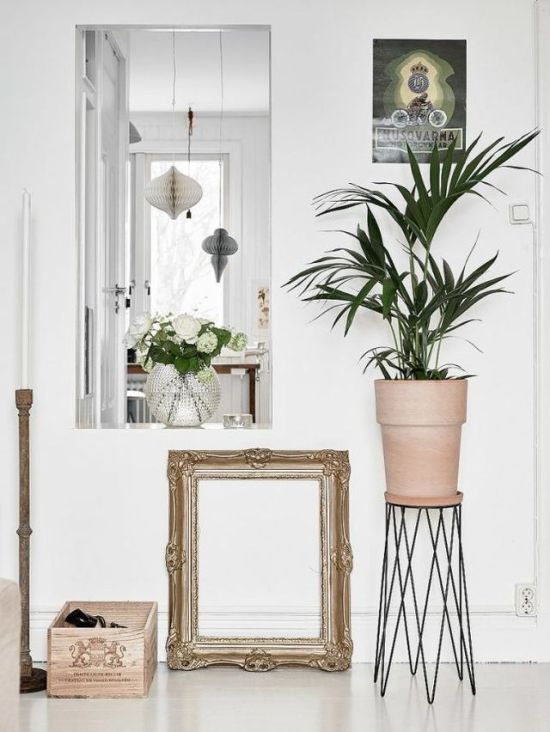 plants-in-the-home-pinterest-8
