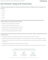 Quiz & Worksheet - Biology Lab for Enzyme Activity | Study.com