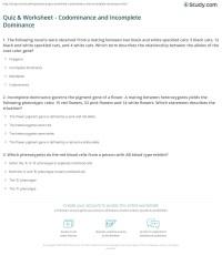 Multiple Allele Worksheet Key - human ge ics multiple ...